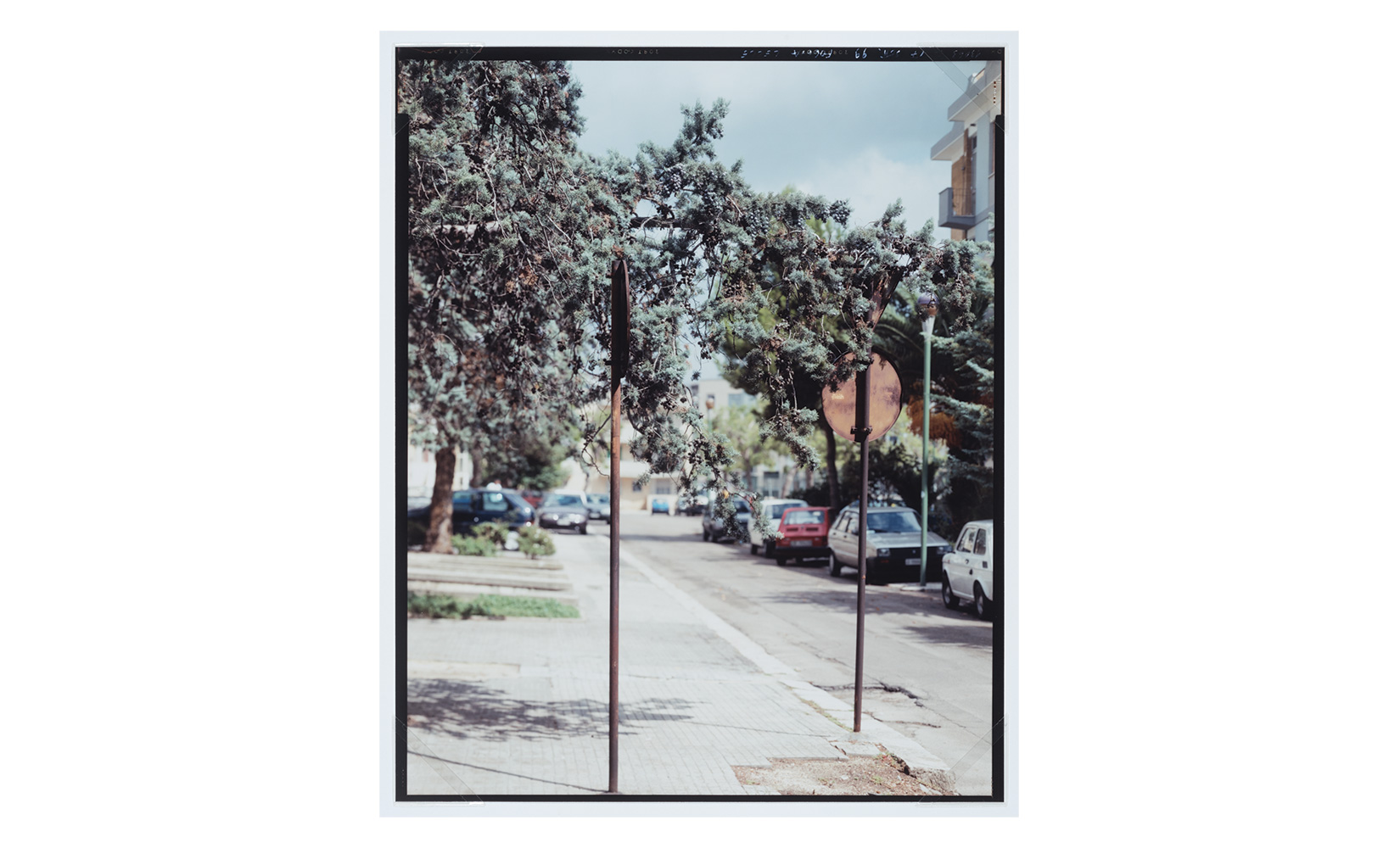olivier-andreotti-guido-GUIDI-12.jpg